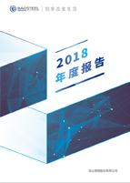 2018年度报告